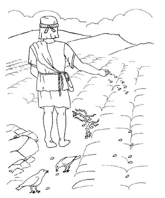 Dibujos Católicos : Parábola del sembrador para colorear