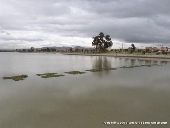 Laguna Humedal Tibabuyes