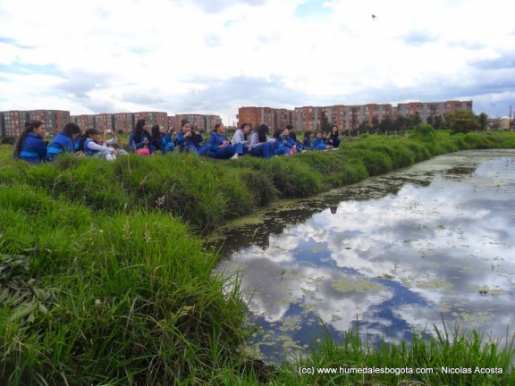 Espejo de Agua, Humedal de Capellanía; Día del medio ambiente.