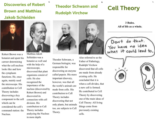 Master The Quest Cell Theory Brochure