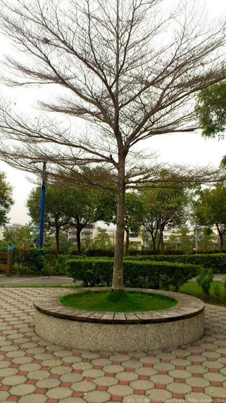 921震災紀念公園-6