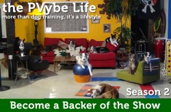 Dog Training and Lifestyle Show