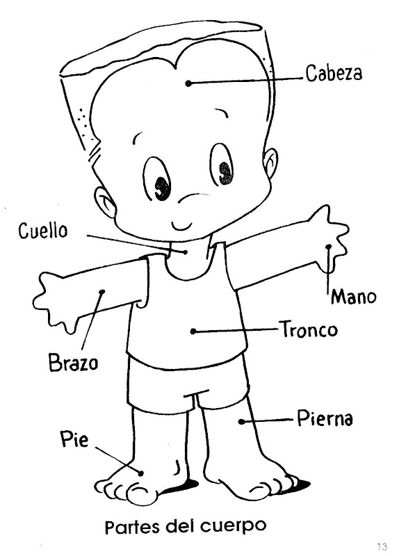為孩子們的著色頁: Partes del cuerpo para preescolar para colorear