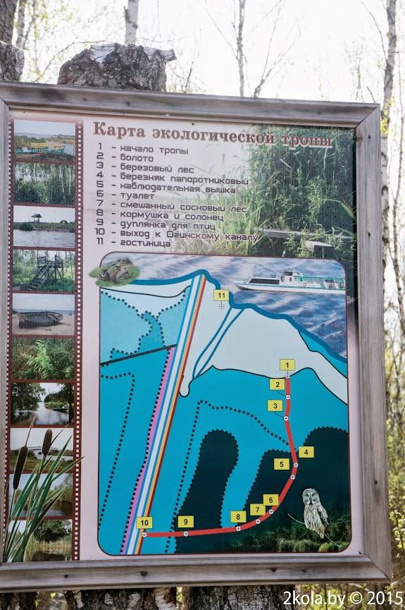 Мапа экалагічнай сцежкі возера Выганашчанцкае