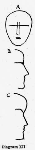 Diagram XII. A, B, C
