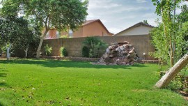 Backyard with mature trees, green grass, covered patio in Mesa 85212