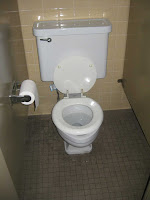 >Dual Flush Toilets- They are a Big Deal (1/2)