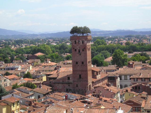 torre de guinigi 1