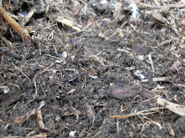 Coffee Grounds in Compost (1/6)