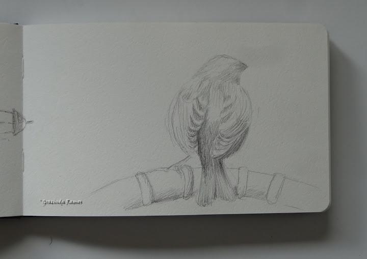 Desenhos de Viagem 4 (2/6)
