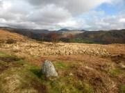 Harter Fell on the horizon from Muncaster Fell