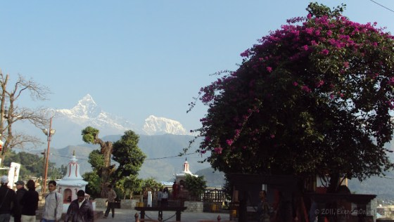 Machhapuchhre and Bindabasini - an early morning view