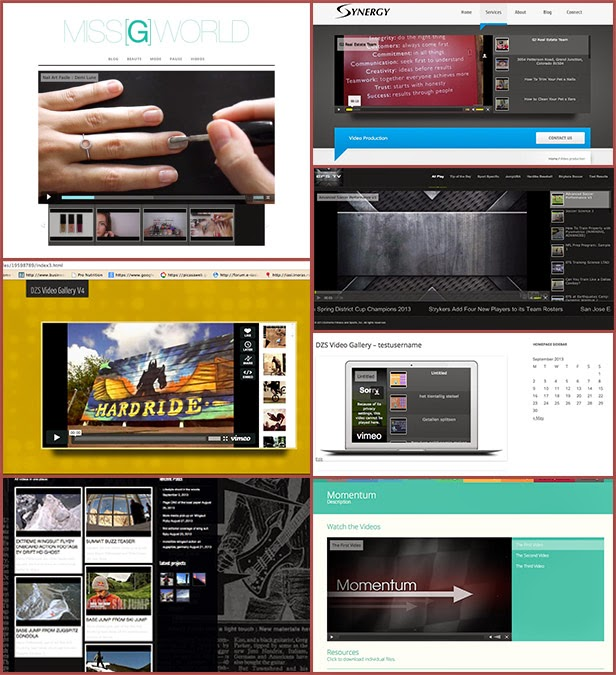 Video Gallery WordPress Plugin /w YouTube, Vimeo, Facebook pages - 9