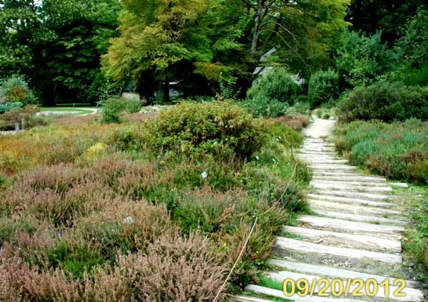 natural gardening botanical gardens