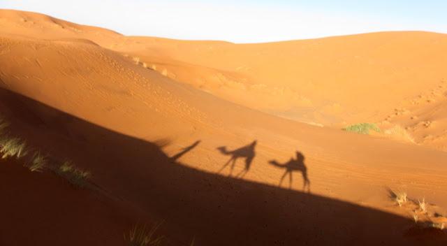 Camel trekking in Merzouga, Morocco