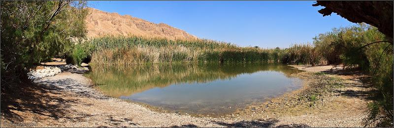 Фото: Панорама: Озеро в Эйнот Цуким