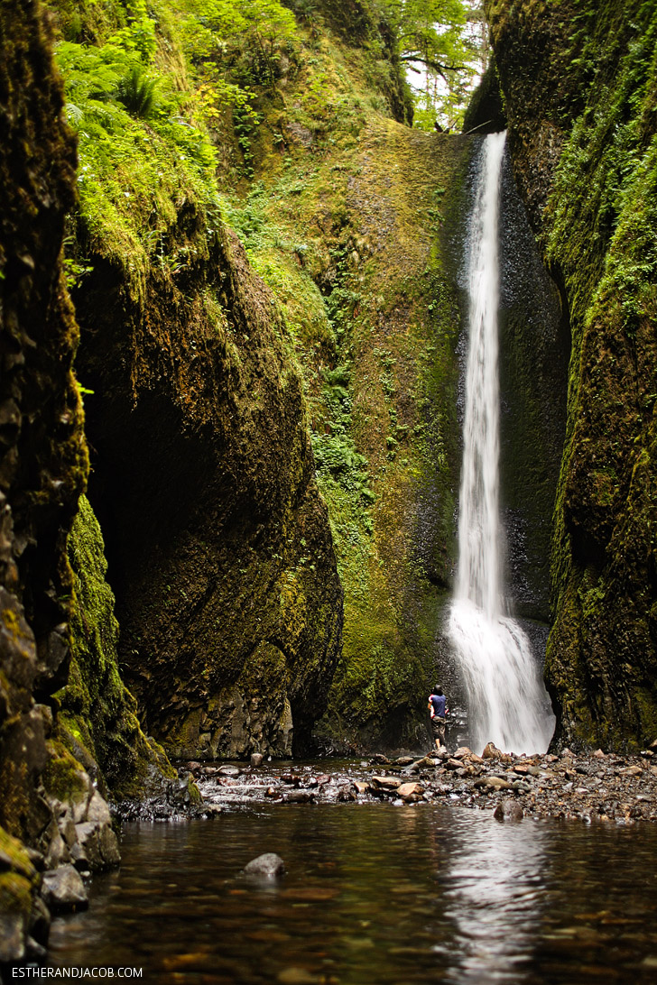 Lower Oneonta Falls Hike // Places to Hike in Oregon.