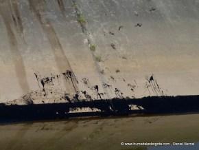 Huellas de crudo en el canal de Troca