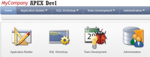 Customized APEX workspace development page