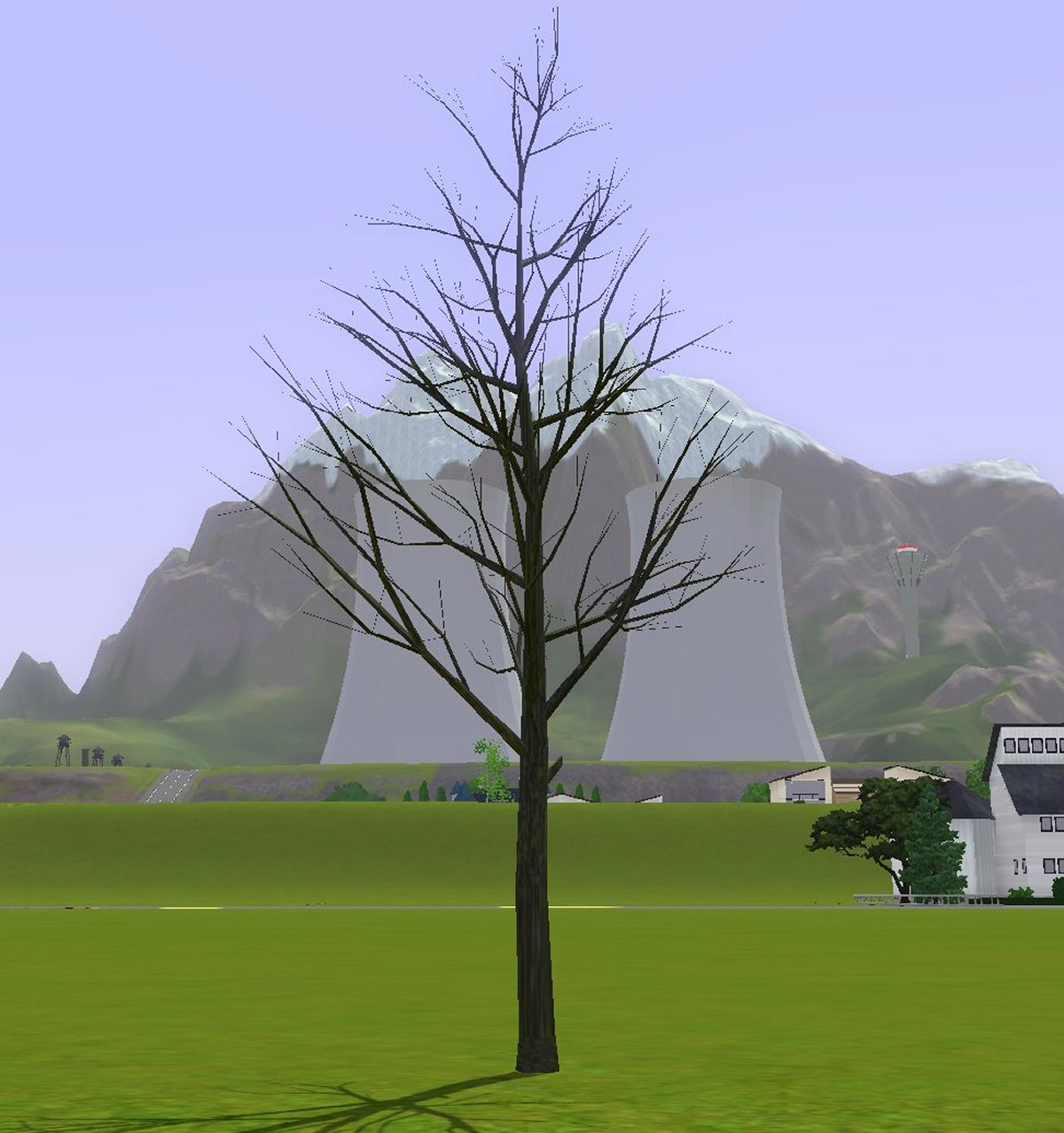 Simming In Magnificent Style Tree Without Leaves