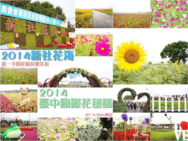 2014年新社花海節與2014臺中國際花毯節