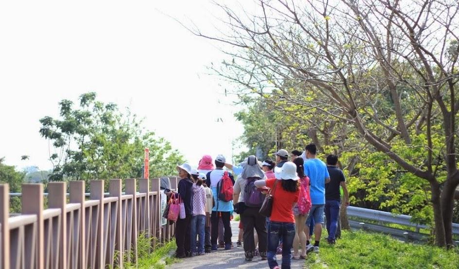 台南安平景點,鹽水溪河口溼地-6
