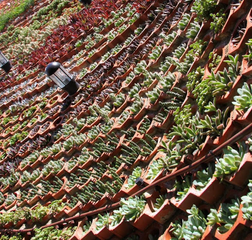 Sistemas de jardines verticales vertical gardens muros for Sistema de riego jardin vertical