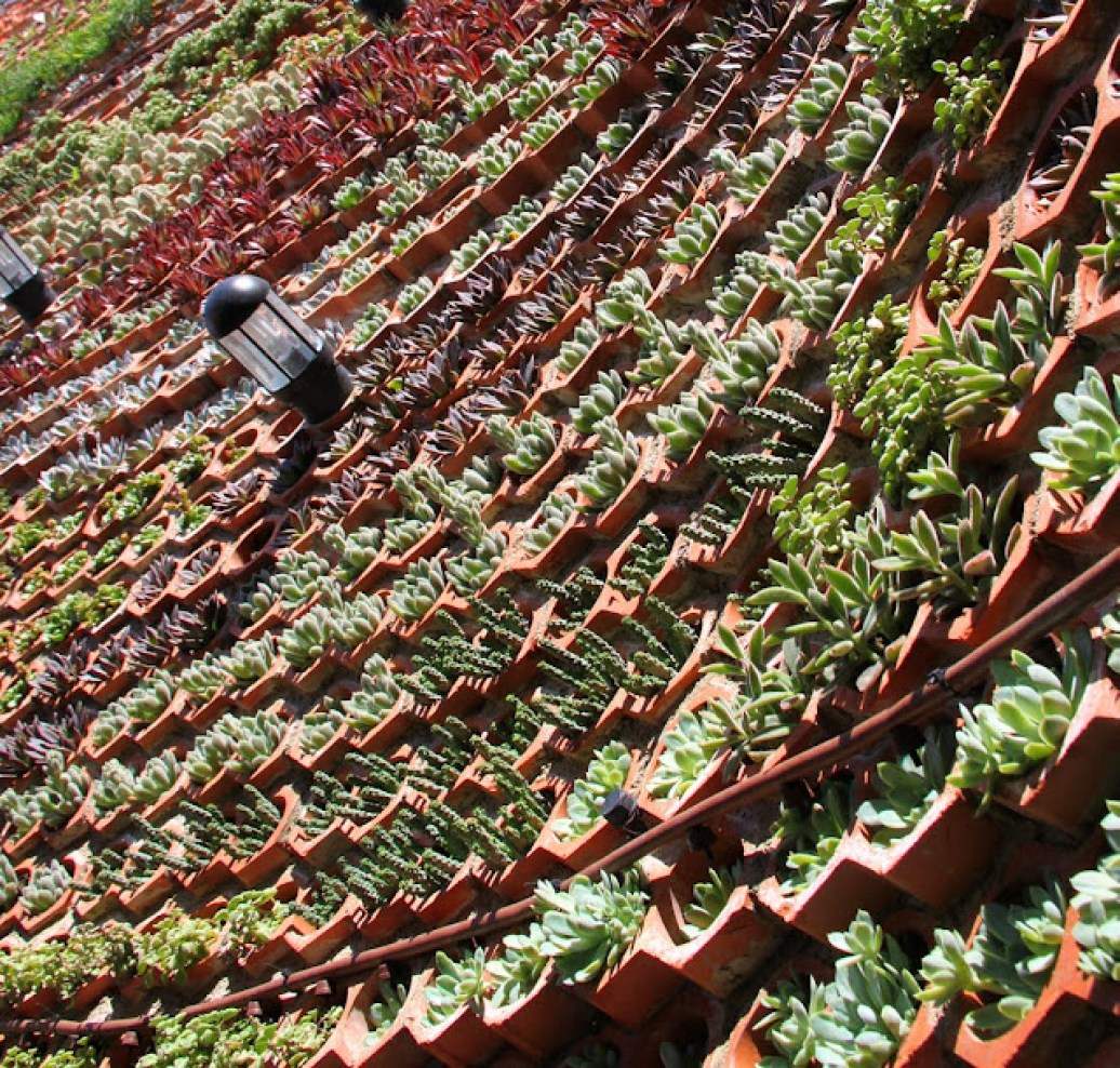 Sistemas De Jardines Verticales Vertical Gardens Muros