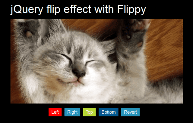 jQuery flip effect with Flippy