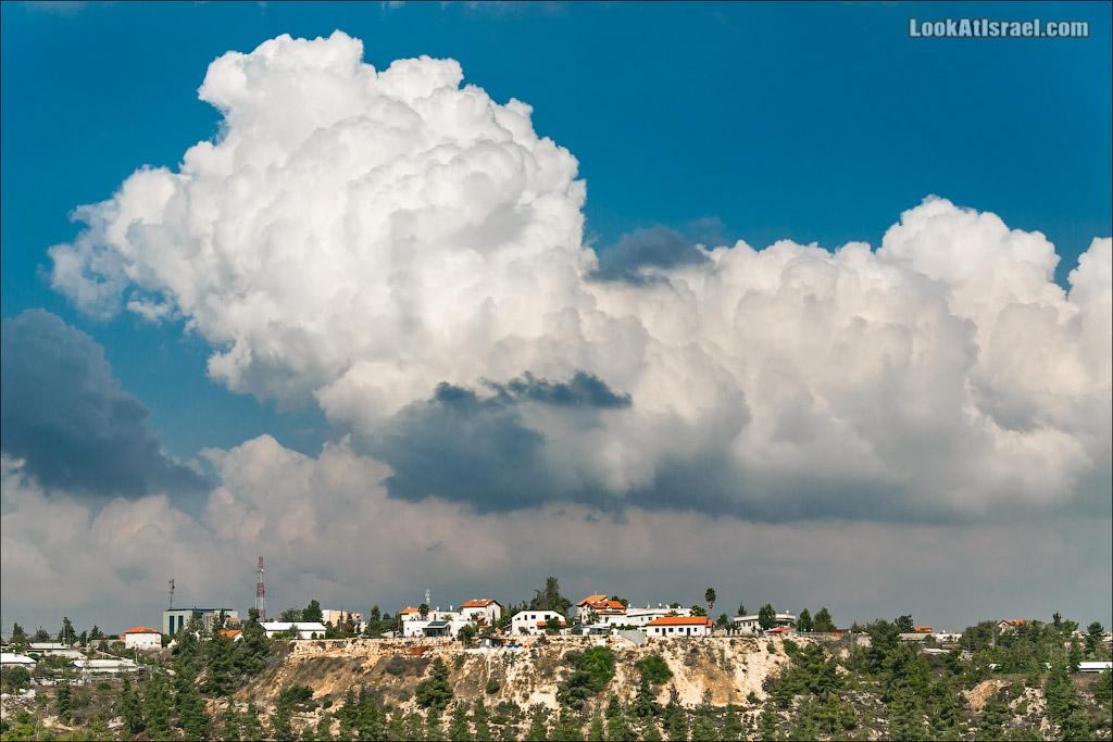 Живущие под облаками