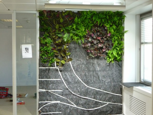 Jardínes Verticales de interior - Plantando