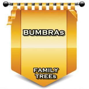 BUMBRAs