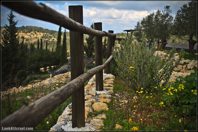 Одно фото / Израиль, парк Яд ха-Шмона