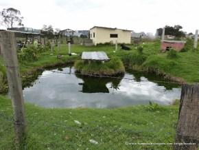 Lago artificial salitre greco