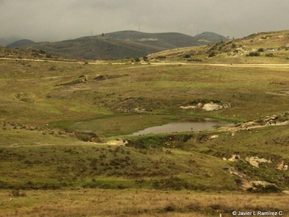 Humedal Laguna Encantada, Noviembre 2011