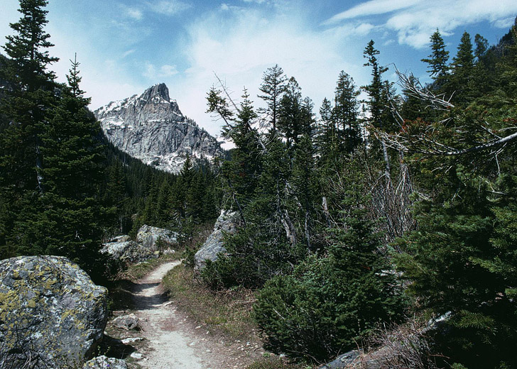 Wyoming Cascade Canyon Trail (15 Best Hikes in the US).
