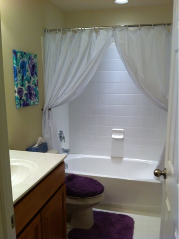 DIY Cheap Quick and Easy Bathroom Update  DIY Danielle