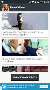 videosdivertidos.videosengracados2018