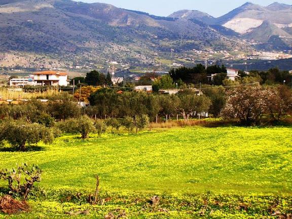 Wann beginnt die beste Reisezeit für die groesste Insel des Mittelmeeres? Sizilien