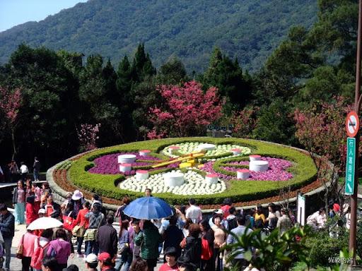 [花季]20110226 2011陽明山花季:陽明公園:花鐘 @ 恆毅的窩 :: 痞客邦