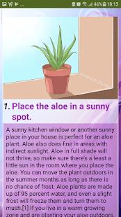 com.mariammoustafid.Care_for_Your_Aloe_Vera_Plant