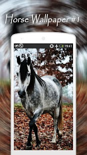 com.zexica.app.horse.wallpapers