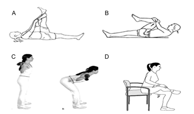 The Best Approaches for Improving Hamstring Flexibility