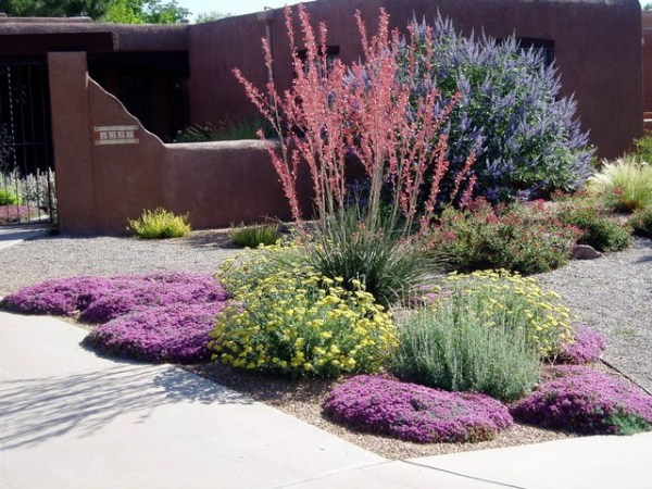 guide scaping landscaping