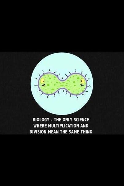 Biology Jokes For Teachers : biology, jokes, teachers, Biology, Jokes, Quantum, Computing