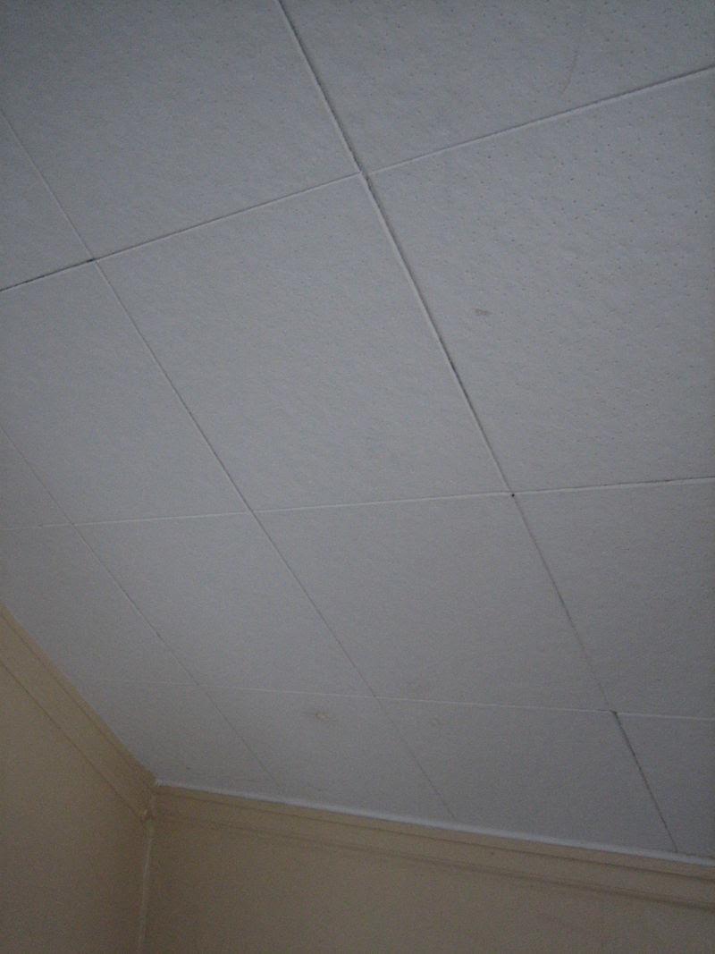 asbestos ceiling tiles 12x12