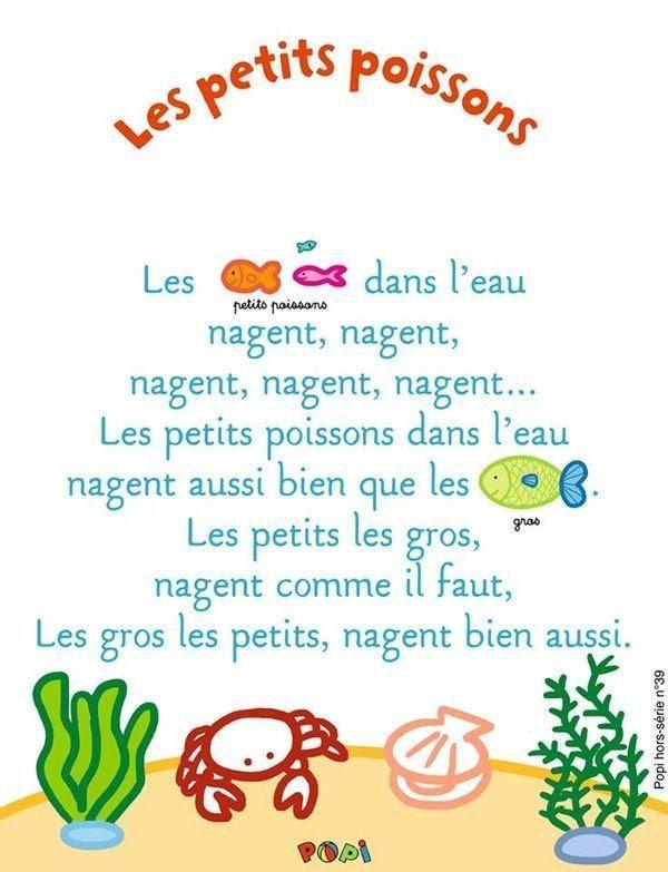 Les Petits Poissons Dans L Eau : petits, poissons, Petite, Poisson