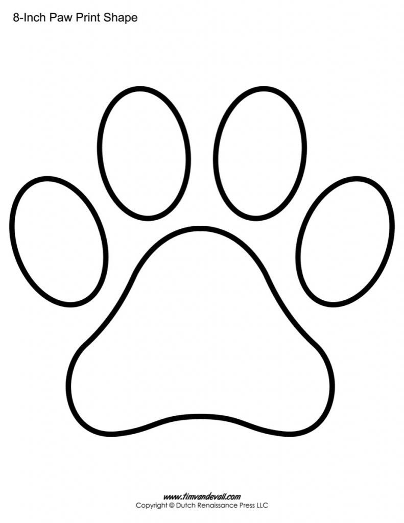Lion Paw Drawing : drawing, Drawing, Skill:, Lions