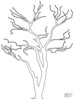 Frisch Malvorlage Kahler Baum   Top Kostenlos Färbung ...