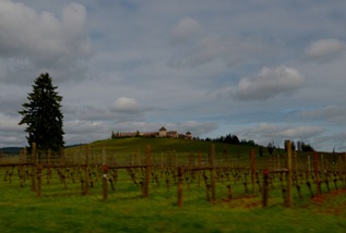 Kings Estate Winery south of Eugene